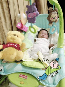 the Fisher Price Newborn to Toddler portable rocker