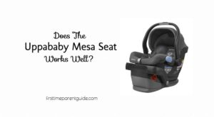 the uppababy mesa car seat