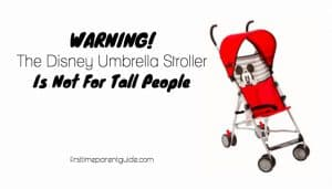 The Disney Umbrella Stroller With Canopy